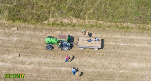 Spremanje sijena na samoj granici Bjelovara